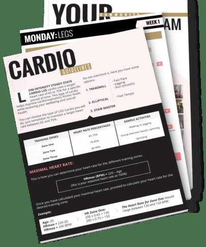 SSBM2 Workout Guide - Instructions